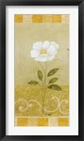 Delicate White I Framed Print