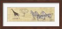 Framed Zebras and Giraffe