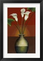 Framed Calla Lily Display I
