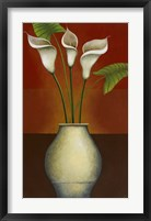 Framed Calla Lily Display II
