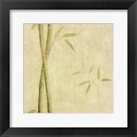 Framed Bamboo Shoots