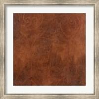 Framed Rust