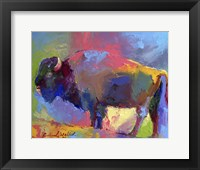 Framed Buffalo