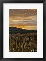 Framed Sunset Over Bear Tooth