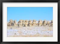 Framed Line Em Up Rams