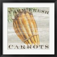 Framed Farm Fresh Carrots