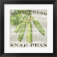 Farm Fresh Peas Framed Print