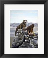 Framed Cougar and Tink