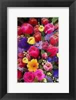 Framed Pink Spring Flowers