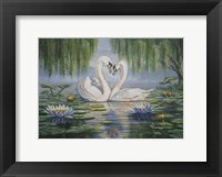 Framed Swan Love