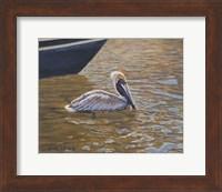 Framed Sparkling Water Pelican