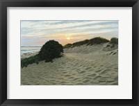 Framed Dune Walk
