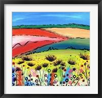 Framed Allium Fields