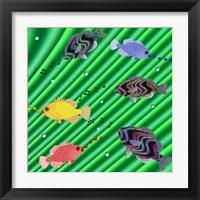 Framed Fishtales IX