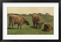 Framed Three Studies of Reddish-Haired Cows on a Meadow
