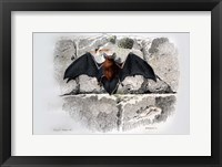 Framed Bat I