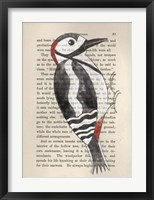 Great Spotted Woodpecker Framed Print