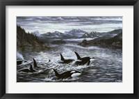 Framed Whales