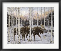 Framed Forest Twilight