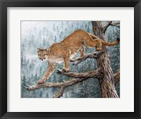 Framed High Climber