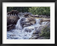 Framed Entiat Falls-Grizzly Family