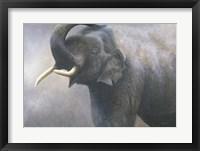 Framed Asian Elephant Dusting