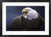 Framed Cry Of The Eagle