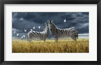 Framed Coming Of Rain Zebra