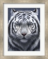 Framed White Tiger Ghost