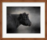 Framed Portrait Of The Black Angus