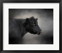 Framed Portrait Of The Black Angus