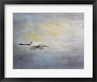 Framed Silent Flight Great White Egret
