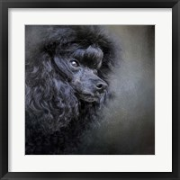 Framed Snack Spotter Toy Black Poodle