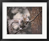 Framed Snow Day Squirrel