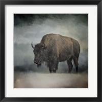 Framed Stormy Day Buffalo