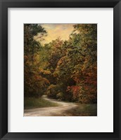 Autumn Forest 1 Framed Print