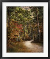 Framed Autumn Forest 2