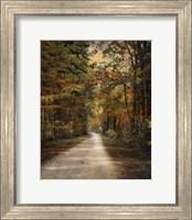 Framed Autumn Forest 3