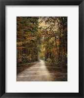 Framed Autumn Forest 3