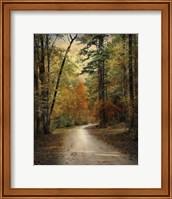 Framed Autumn Forest 4
