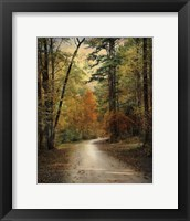 Framed Autumn Forest 4