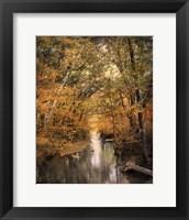 Autumn Riches 2 Framed Print