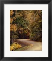 Framed Colorful Journey