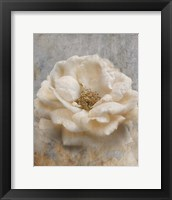 Vintage Rose 1 Framed Print