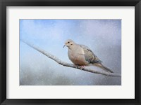 Dove In The Snow Framed Print
