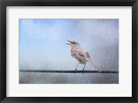 Mockingbird In The Snow Framed Print