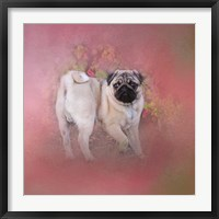 Framed Pug In The Garden