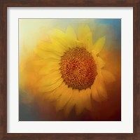 Framed Sunflower Surprise