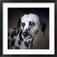 Framed Firemans Dog Dalmatian