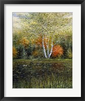 Framed Reflections of Autumn